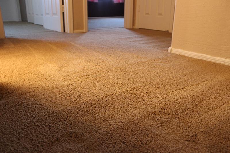 Carpet Stretching Houston Carpet Repair Houston Carpet