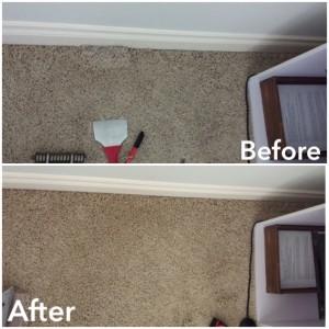 Cat Scratch Carpet Damage